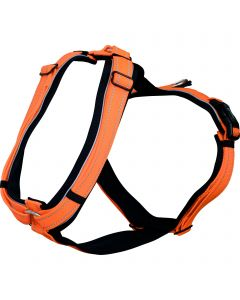 Y-Harness - orange